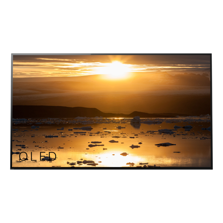 """65"""" A1 4K HDR OLED TV with Acoustic Surface"""