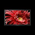 "55"" X85G LED 4K Ultra HD High Dynamic Range Smart Android TV, , hi-res"