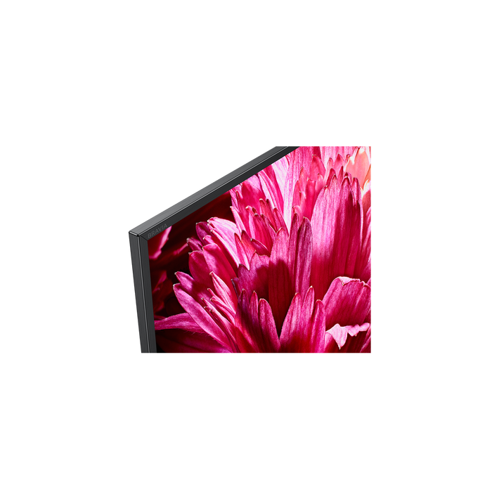 """65"""" X95G LED 4K Ultra HD High Dynamic Range Smart Android TV, , product-image"""