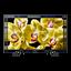 "75"" X80G LED 4K Ultra HD High Dynamic Range Smart Android TV"