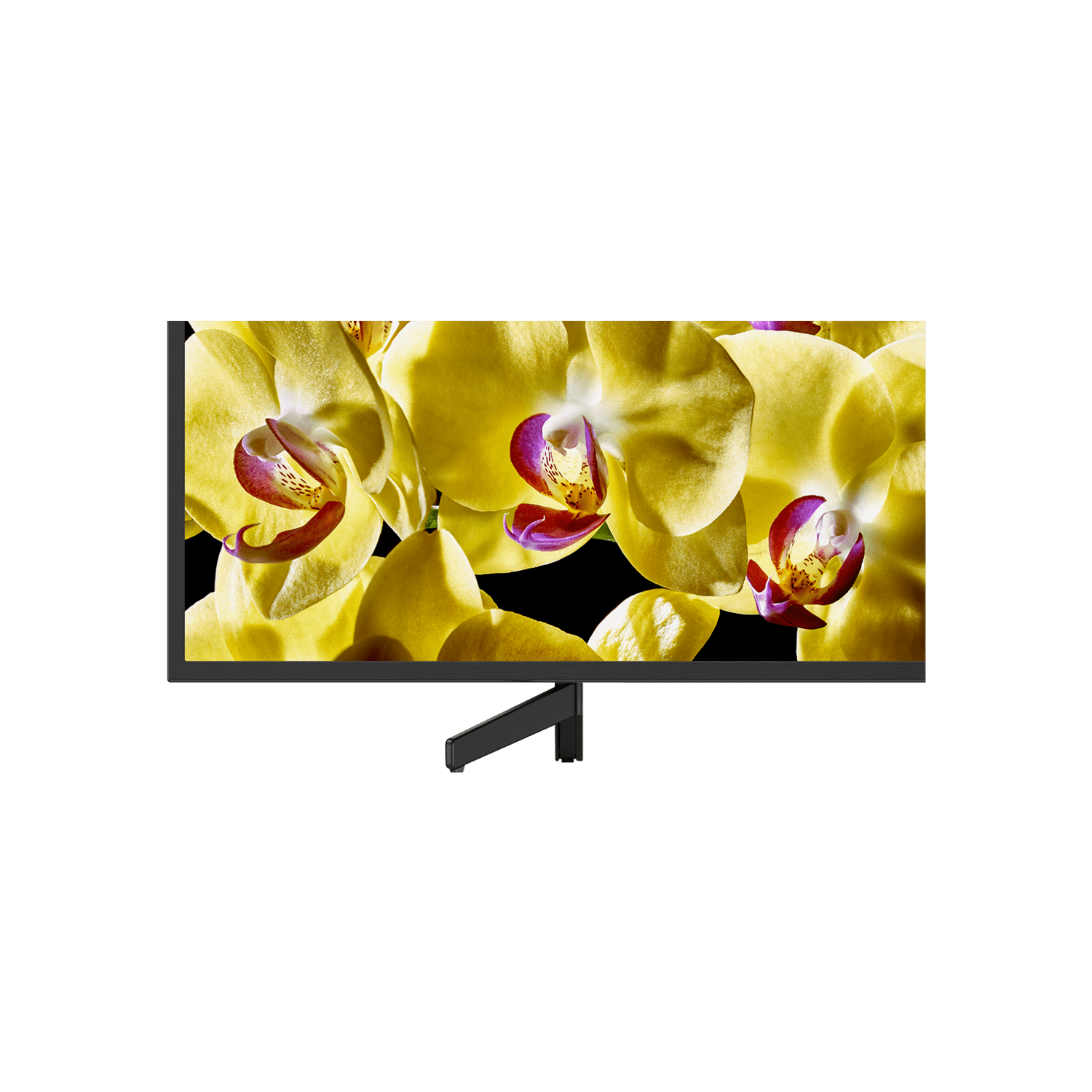 "43"" X8000G LED 4K Ultra HD High Dynamic Range Smart Android TV, , product-image"